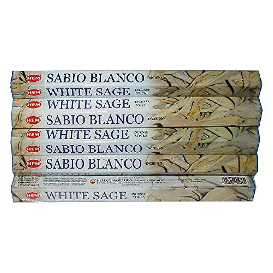 儀式腐敗した電極Hemホワイトセージ100 Incense Sticks (5パックの20 Sticks)