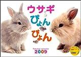 2009ウサギぴょんぴょん (Yama-Kei Calendar)