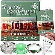 Fermentation Easy Starter Kit - Sauerkraut, Kimchi and More - Recipe Book and Equipment