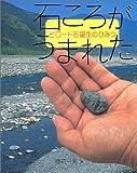石ころがうまれた—ビロード石誕生のひみつ (地球ふしぎはっけんシリーズ)