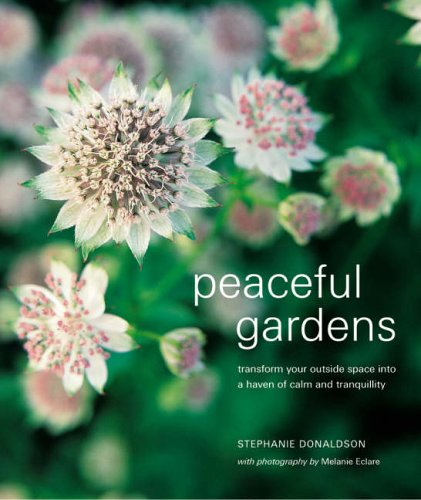 Peaceful Gardens: Transform Your Outside Space into a Haven of Calm and Tranquility (Compacts)の詳細を見る