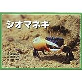 シオマネキ (自然科学紙芝居シリーズ 2)