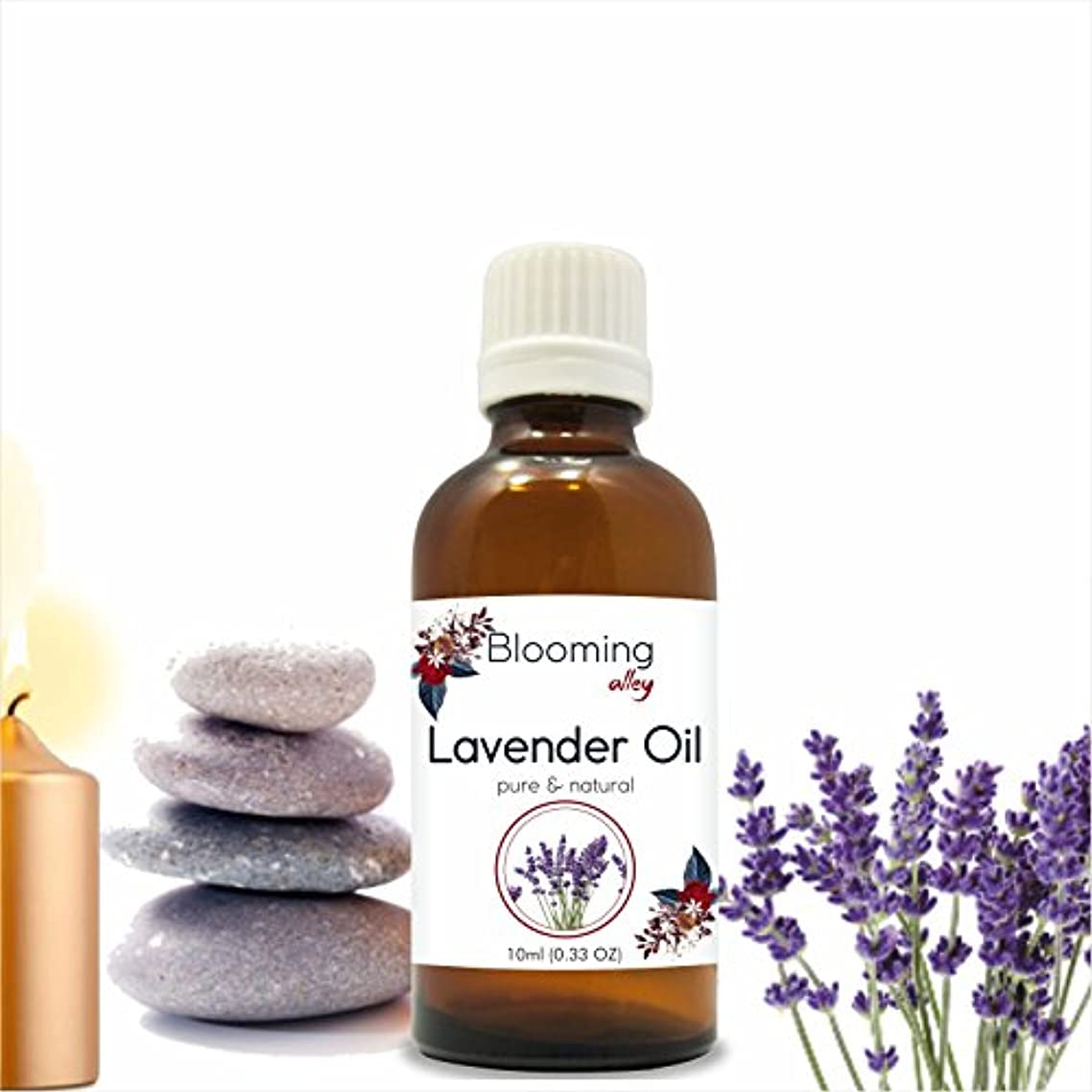 おなじみの実り多いレインコートLavender Oil (Lavandula Officinalis) Essential 10 ml or 0.33 Fl Oz by Blooming Alley