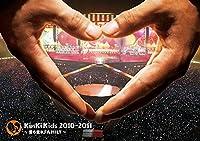 KinKi Kids 2010-2011 ~君も堂本FAMILY~ 【DVD通常盤】