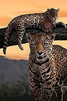 Jaguars 12 x 18 Art Print LANT-49900-12x18