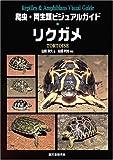 爬虫・両生類ビジュアルガイド リクガメ