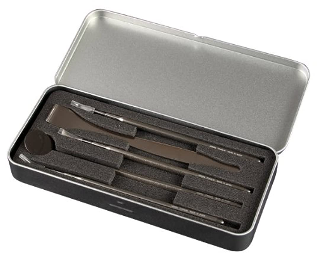 薄汚い授業料毛布NIKKEN ニッケン刃物 デンタルツール5本セット TM-13000