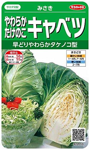 サカタのタネ 実咲野菜2010 やわらかたけのこキャベツ みさき 00922010