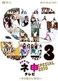 AKB48 ネ申テレビ スペシャル  (~冬の国から2010~) [DVD]
