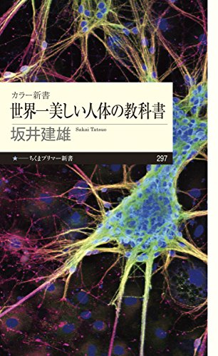 カラー新書 世界一美しい人体の教科書 (ちくまプリマー新書)