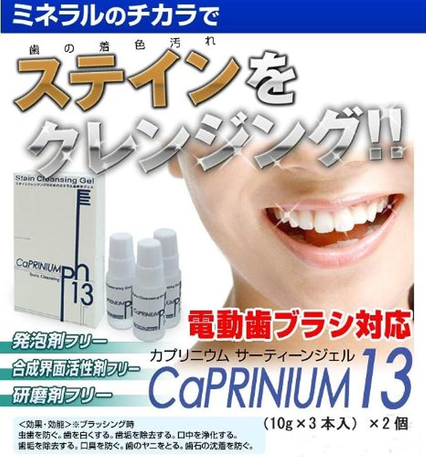 一回豆まさに【2個セット】 カプリニウム サーティーンジェル(研磨剤フリー?電動歯ブラシ対応歯磨きジェル)