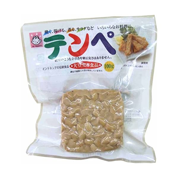 ヤマク食品 テンペ100g×10袋の商品画像