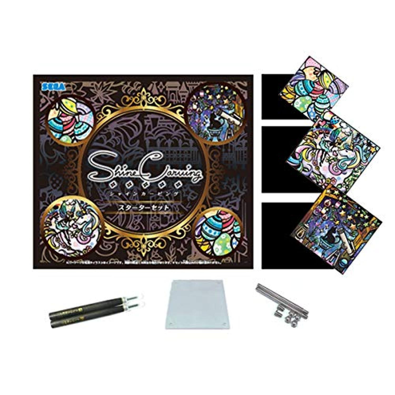 【Amazon.co.jp 限定】シャインカービング ( M ) スターターセット