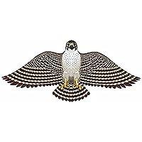 Peregrine Falcon Wing Flapper 55in Kite Gayla by Gala Kites [並行輸入品]