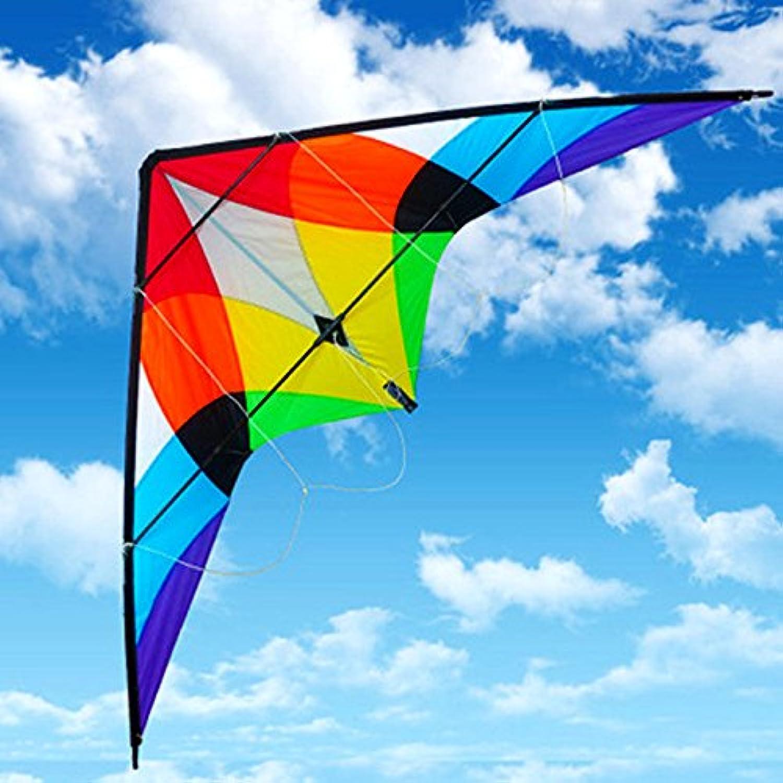 Stunt電源凧アウトドアスポーツFunおもちゃEasy to Flyと持ち運び便利な使用Designed Withファッションパターンには、美しいクラシック
