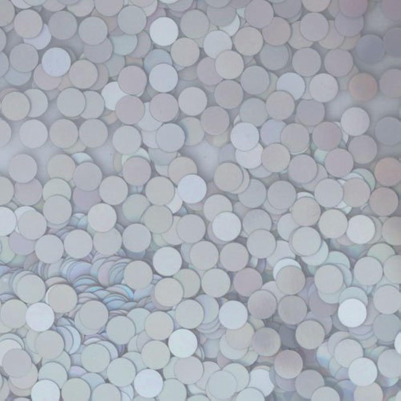 鹿卒業記念アルバム愚かピカエース ネイル用パウダー ピカエース 丸ホロ 2mm #878 マットシルバー 0.5g アート材