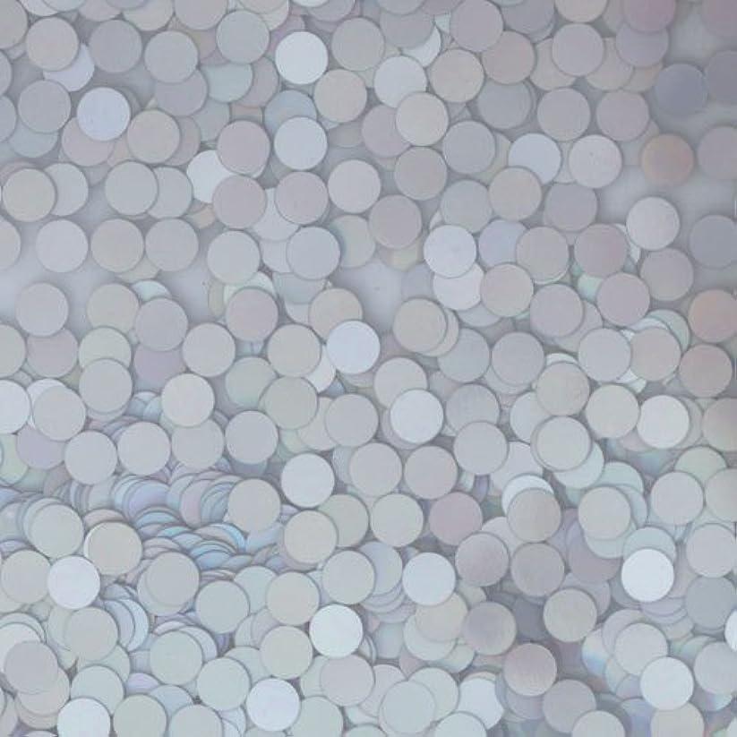 第九破壊的な境界ピカエース ネイル用パウダー ピカエース 丸ホロ 1.5mm #883 マットシルバー 0.5g アート材