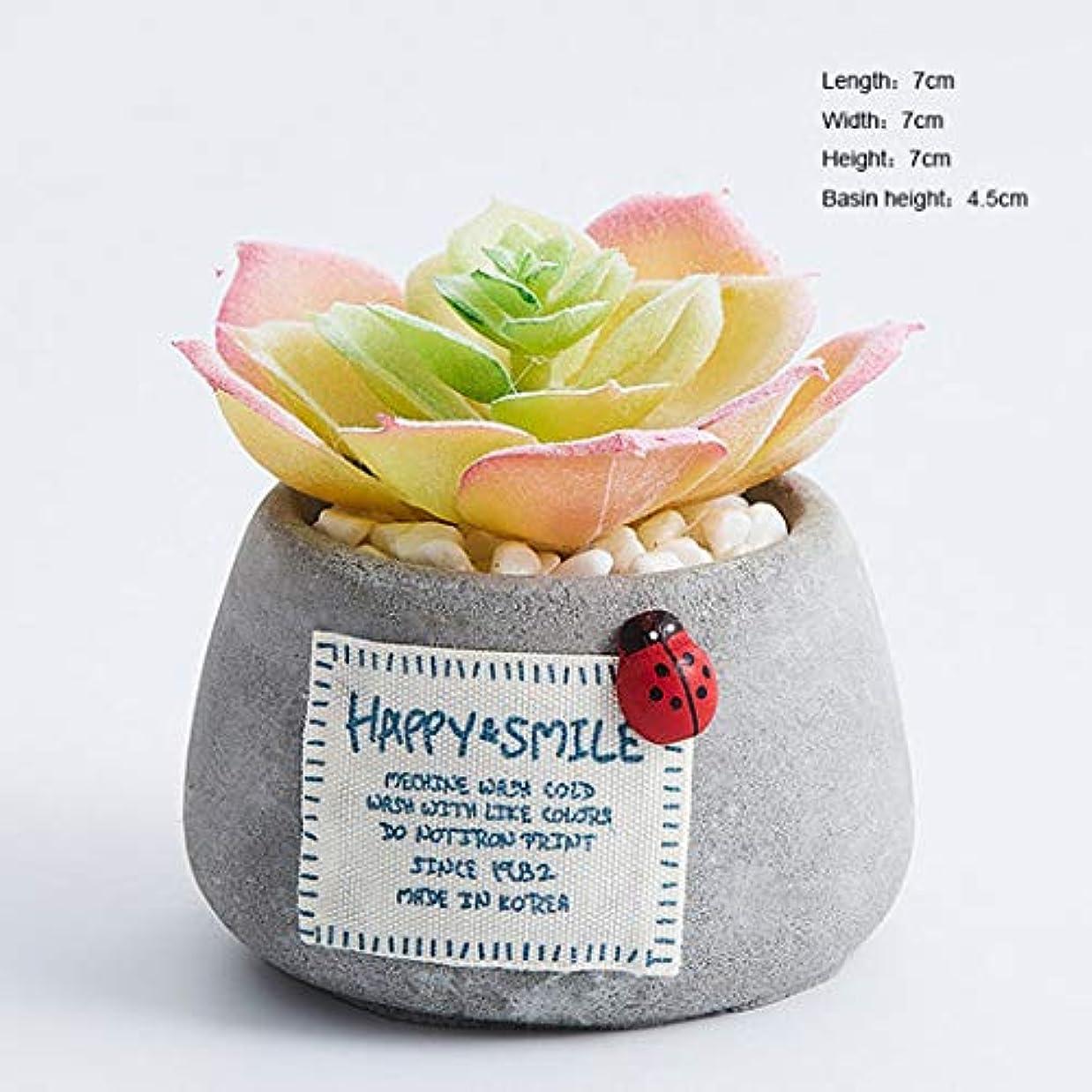破壊するお互い知り合いになる人工植物ミニジューシーな植物小さな鉢植えホームリビングルームキッチン本棚卓上オフィス学校装飾のための多肉植物,H