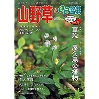 山野草とミニ盆栽 2008年 09月号 [雑誌]