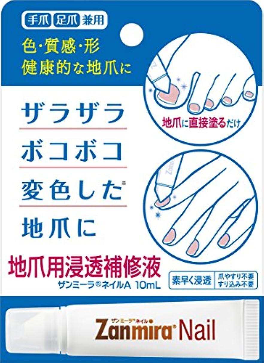 非行遺伝的脚【Amazon.co.jp限定】 ザンミーラ ネイル A Zanmira Nail A 10ml 地爪用浸透補修液