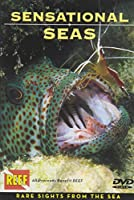 Sensational Seas DVD: Rare Sights from the Sea