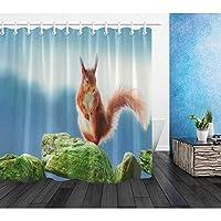 WZYMNYL 敷物セットが付いている石造りのシャワーカーテンのかわいいリス浴槽の装飾のためのおかしい野生動物の浴室の防水ポリエステル生地