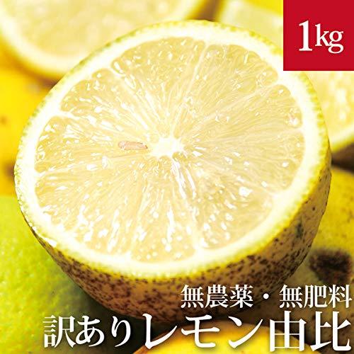 訳あり由比のレモン 1kg 自然栽培(無農薬・無肥料) 静岡県産