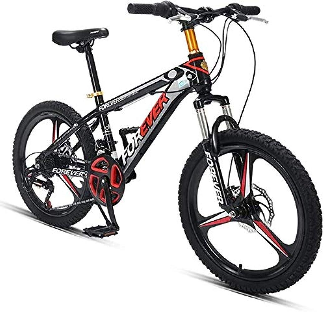 宣言するフォルダ白鳥20インチキッズマウンテンバイク、24スピード高炭素鋼のハードテイルすべての地形山自転車、マウンテントレイルバイクのデュアルディスクブレーキ