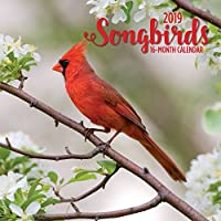 songbirlds Mini Wallカレンダー、鳥by Avalanche発行