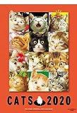 2020年 ビッグコミックオリジナル 村松誠 猫カレンダー (2020カレンダー) ([カレンダー])
