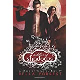 A Soldier of Shadows: 19