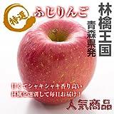 送料込 シャキッと甘い太陽の恵! 厳選産地 秀品 ふじ りんご 5kg