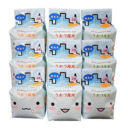 【精米】無洗米 JAうおづ産コシヒカリ ご当地キャラクターミラたんの「キューブ米」2.7kg (2合袋:300g×9個) 令和元年度産