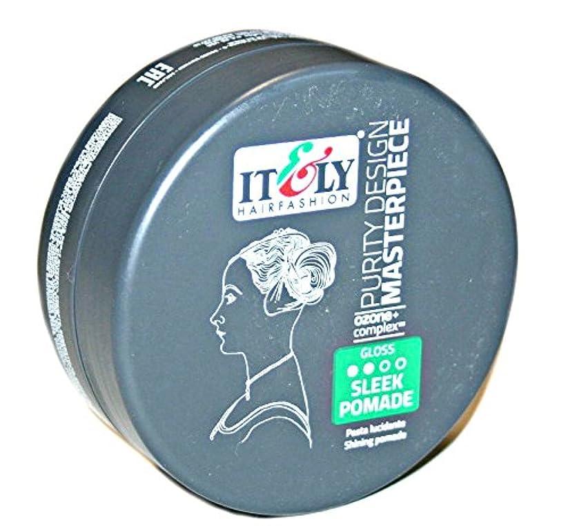 ブラケット噴火ラケットIT&LY Hair Fashion それ&LYマスターピースなめらかシャイニングポマード、3.38液量オンス