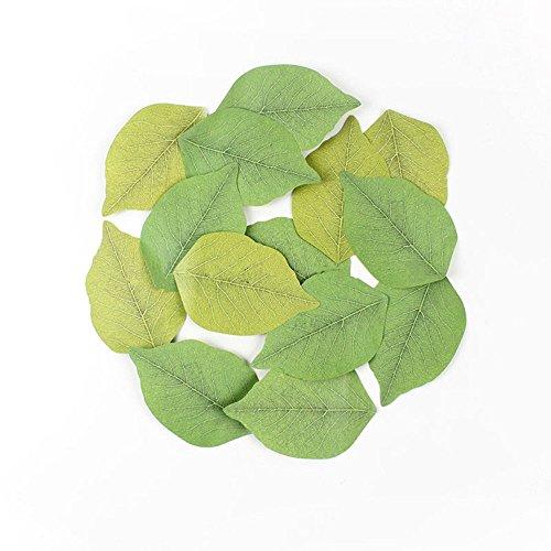 Myoffice まとめて 5冊 セット かわいい 葉っぱ ソックリ 本物 みたい 粘着 メモ 帳 付箋 貼り付け 可能