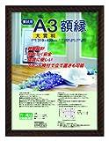 ナカバヤシ 賞状額縁 金ラック(樹脂製) 賞状大賞判 フ-KWP-21 N