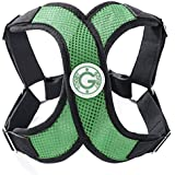 Gooby 04111-HGRN-S Choke Free X-Harness for Small Dogs, Hunter Green, Small
