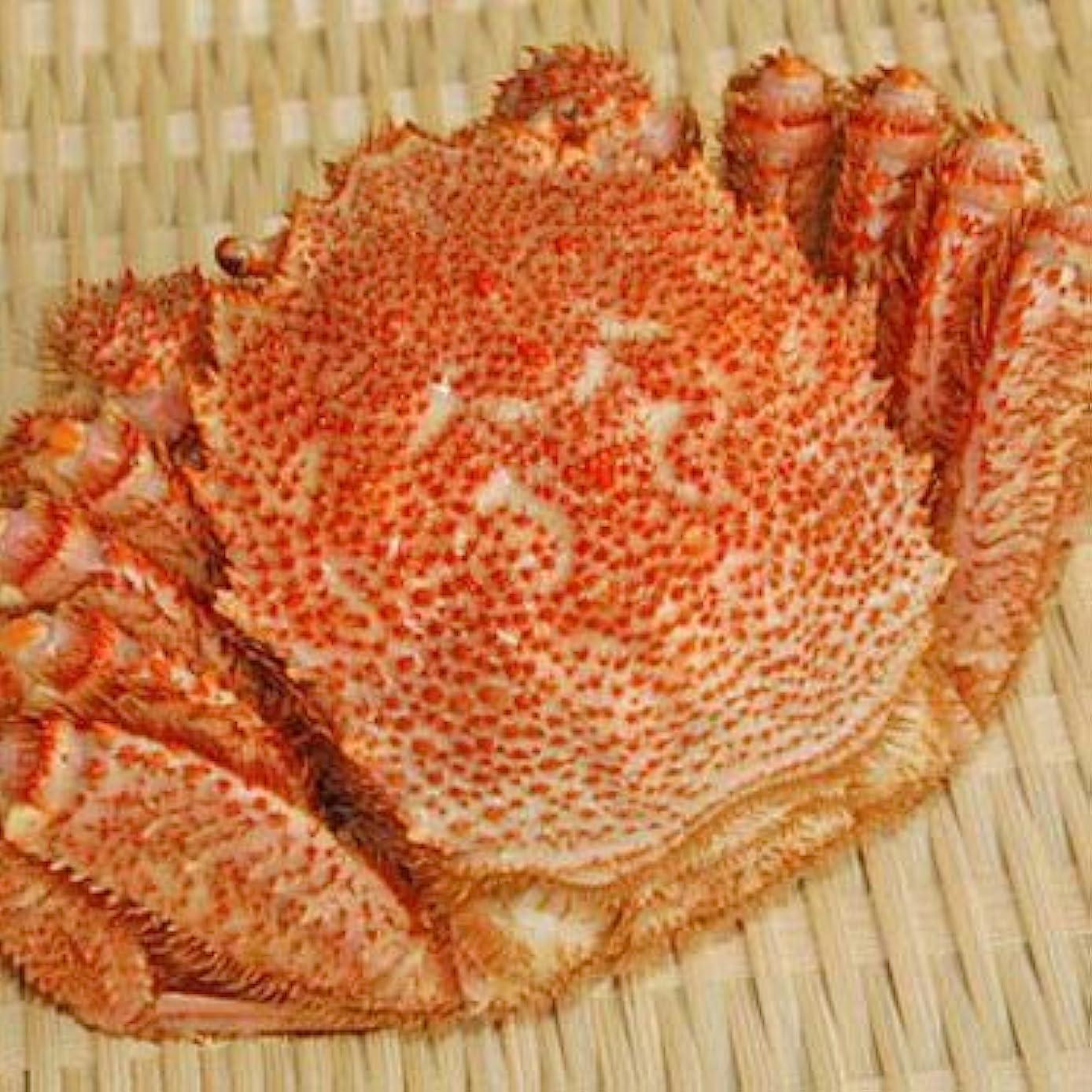 焼く照らす素晴らしい良い多くの【極上】毛ガニ700g(北海道産ボイル冷凍)