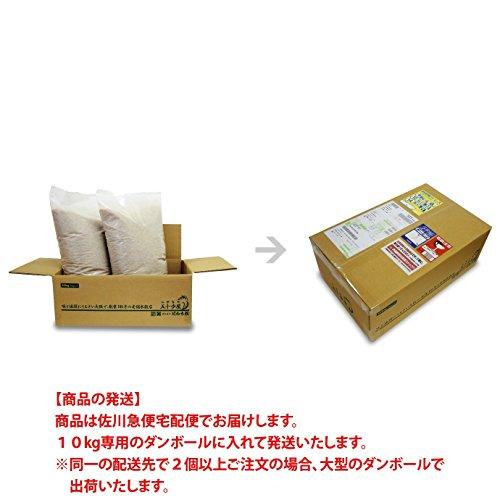 【出荷日に精米】 佐賀県産 さがびより 白米 10kg (5kg×2) 平成28年産 特A米 白石地区限定