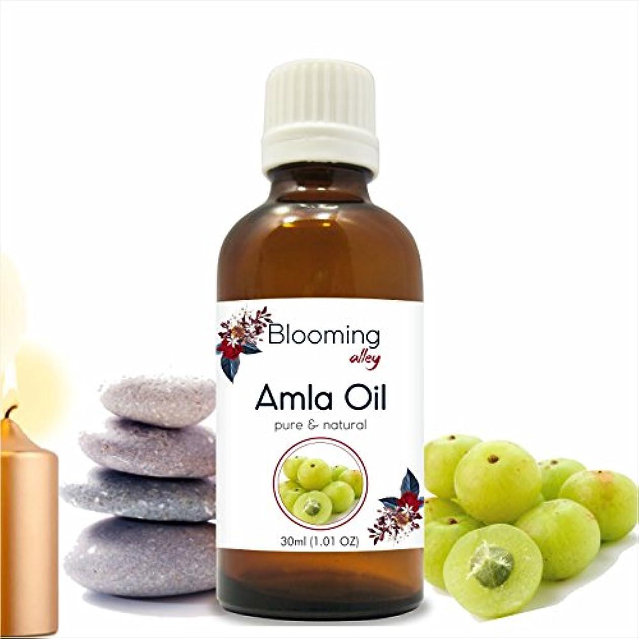 つなぐスナック慣れているAMLA Indian Gooseberry (Emblica officinalis) Infused Oil 30ML