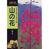 山の花 (ヤマケイポケットガイド)