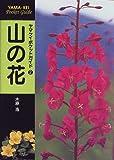 関連アイテム:山の花 (ヤマケイポケットガイド)