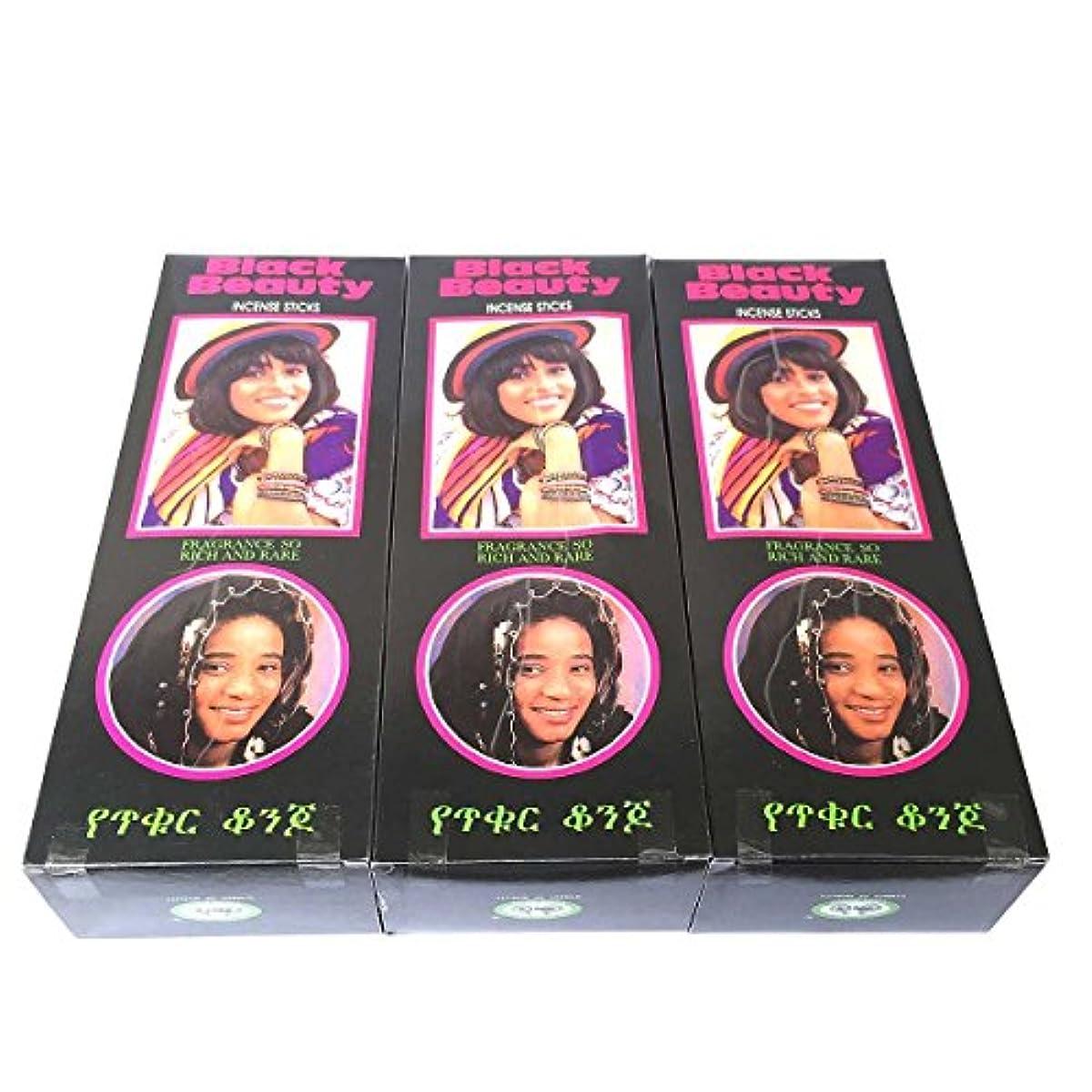 ブラックビューティー香スティック 3BOX(18箱) /CYCLE BLACK BEAUTY/インセンス/インド香 お香 [並行輸入品]