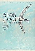 天上の鳥 アマツバメ―オックスフォード大学博物館の塔にて