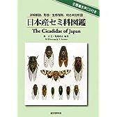 日本産セミ科図鑑