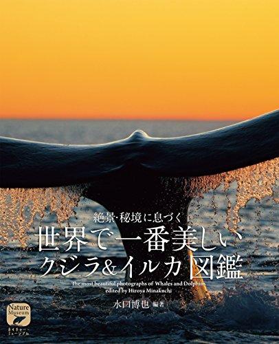 世界で一番美しい クジラ&イルカ図鑑: 絶景・秘境に息づく (ネイチャー・ミュージアム)