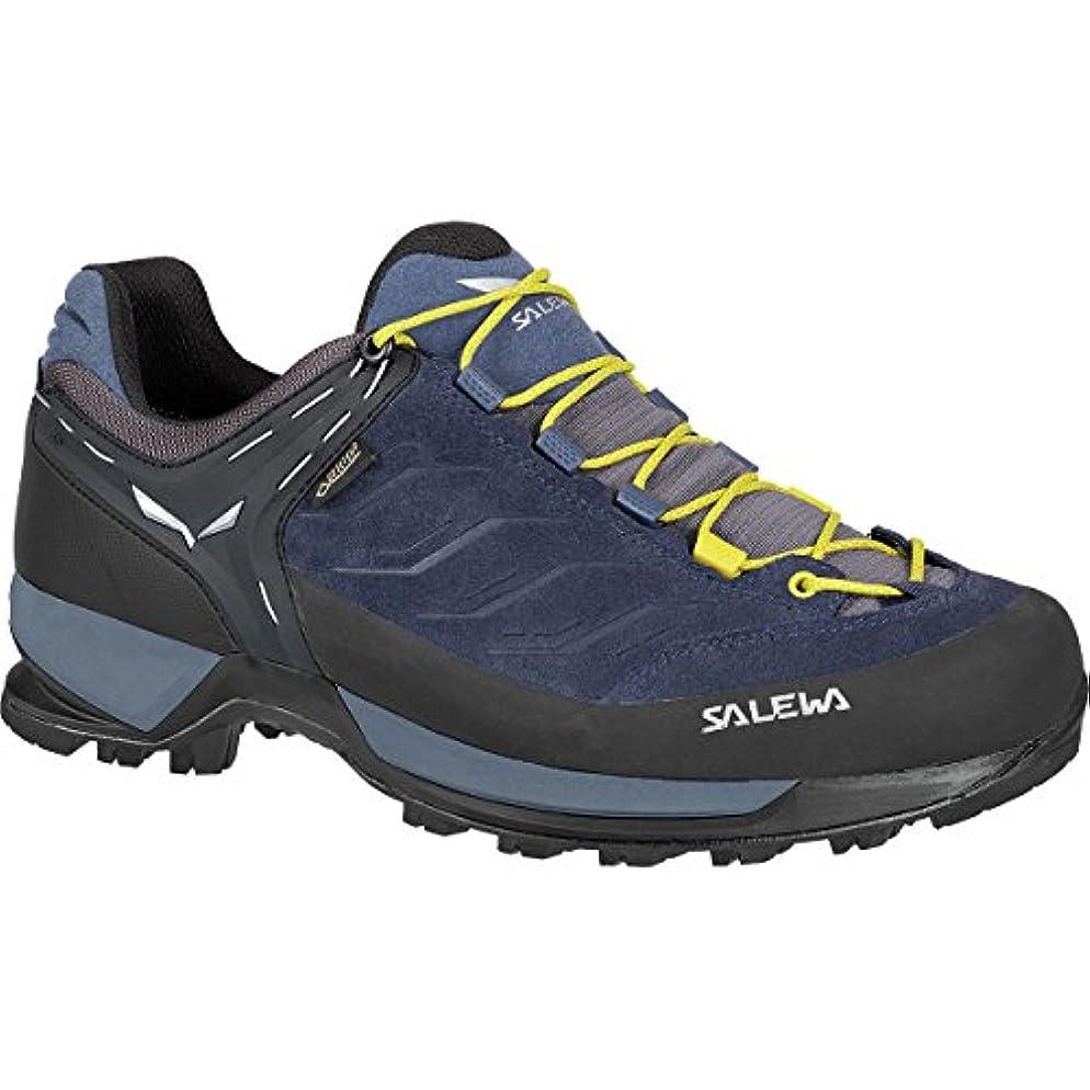 推進監督する徴収[サレワ] メンズ ハイキング Mountain Trainer GTX Hiking Shoe [並行輸入品]