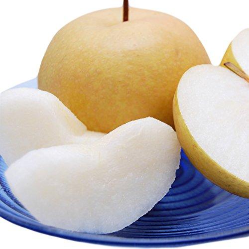 梨 豊水 送料無料 朝もぎ樹上完熟 熊本県産 秀品3kg (7〜10玉入り)