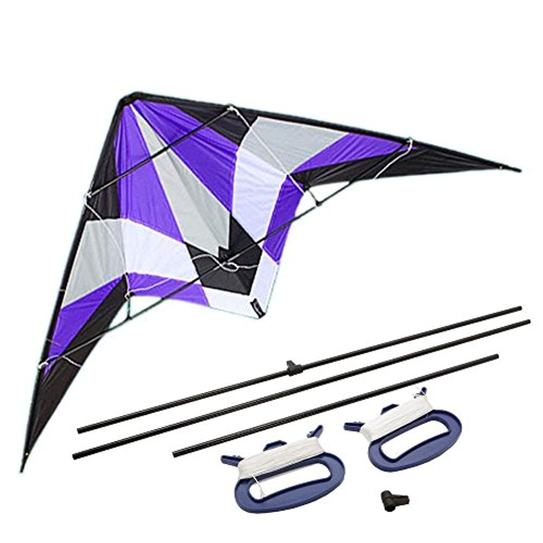energi8 _ CIT KiteデュアルラインBig Wingファミリアウトドア再生71