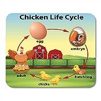 マウスパッドゴムミニ長方形動物鶏ライフサイクル農場納屋漫画ゲームノートブックコンピューターアクセサリーバッキング